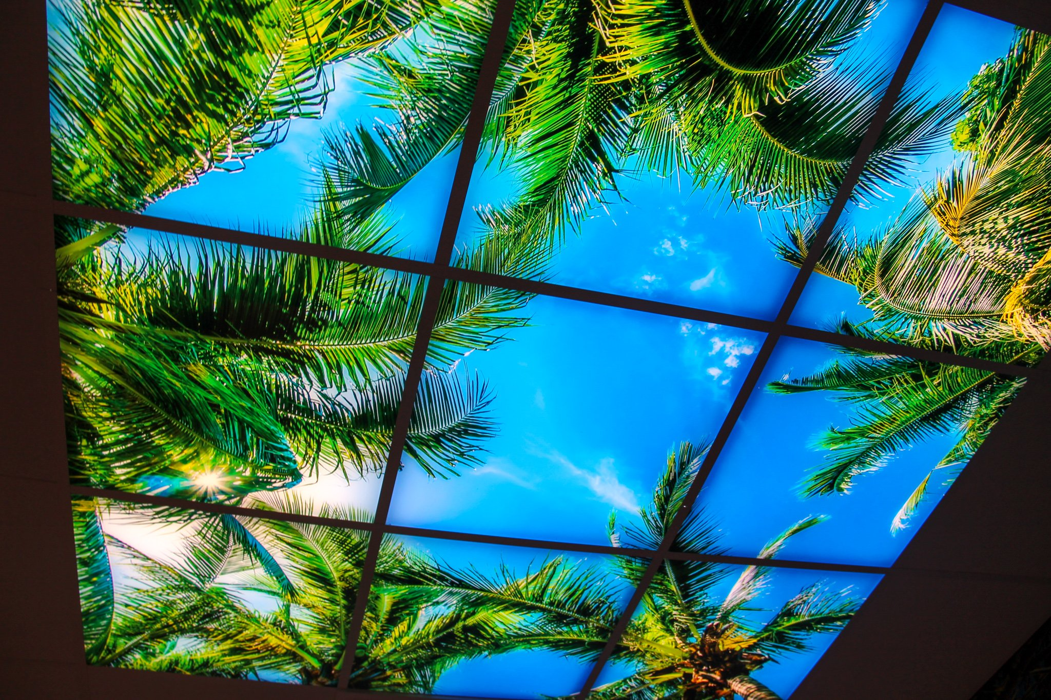 fotopaneel-tropisch